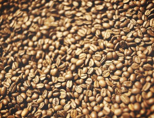 Les différentes variétés du café